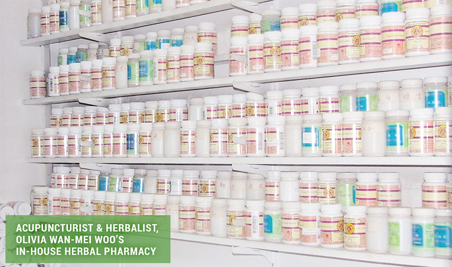 Acupuncturist & Herbalist, Olivia Wan-Mei Woo's In-House Herbal Pharmacy